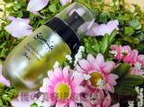 外ふわふわ中トロトロのガミラシークレットオイル状美容液 檀れい・戸田恵梨香さん愛用。